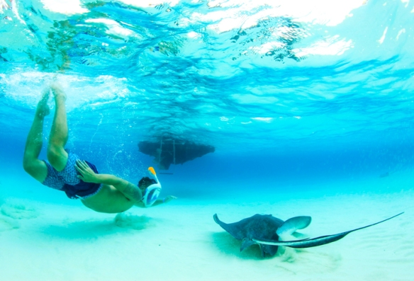 Stingray encounter at Stingray City Grand Cayman